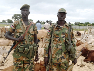 SPLA soldiers standing near cattle belonging to the Murle tribe, in Pibor County, Jonglei State, South Sudan, 25 September 2012 (ST)